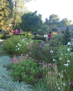 SGC Celebrating the Goodbody Garden on a late summer afternoon